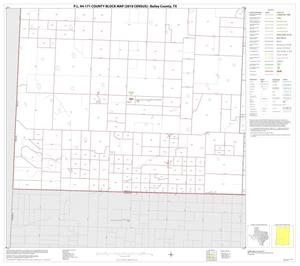 Primary view of object titled 'P.L. 94-171 County Block Map (2010 Census): Bailey County, Block 5'.