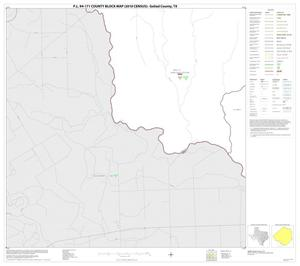 Primary view of object titled 'P.L. 94-171 County Block Map (2010 Census): Goliad County, Block 13'.