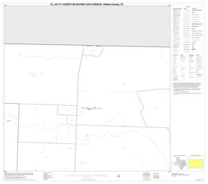 Primary view of object titled 'P.L. 94-171 County Block Map (2010 Census): Dallam County, Block 4'.