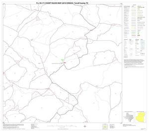 Primary view of object titled 'P.L. 94-171 County Block Map (2010 Census): Terrell County, Block 6'.