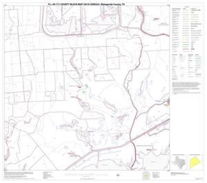 Primary view of object titled 'P.L. 94-171 County Block Map (2010 Census): Matagorda County, Block 22'.