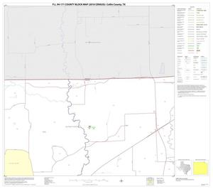 Primary view of object titled 'P.L. 94-171 County Block Map (2010 Census): Collin County, Block 8'.