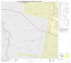 Primary view of object titled 'P.L. 94-171 County Block Map (2010 Census): Brazoria County, Inset V03'.