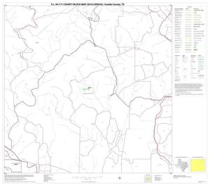 Primary view of object titled 'P.L. 94-171 County Block Map (2010 Census): Uvalde County, Block 11'.