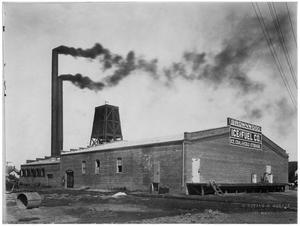 Primary view of object titled 'Brownwood Ice Company'.