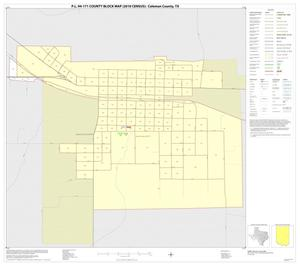 Primary view of object titled 'P.L. 94-171 County Block Map (2010 Census): Coleman County, Inset F01'.