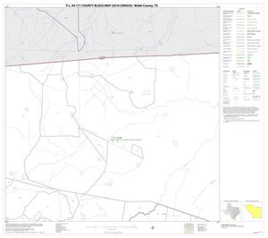 Primary view of object titled 'P.L. 94-171 County Block Map (2010 Census): Webb County, Block 15'.