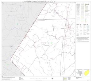 Primary view of object titled 'P.L. 94-171 County Block Map (2010 Census): Gonzales County, Block 13'.