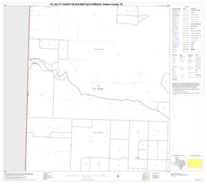 Primary view of object titled 'P.L. 94-171 County Block Map (2010 Census): Dallam County, Block 13'.