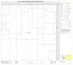 Primary view of object titled 'P.L. 94-171 County Block Map (2010 Census): Callahan County, Block 4'.