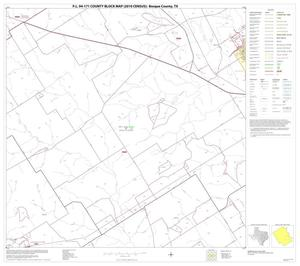 Primary view of object titled 'P.L. 94-171 County Block Map (2010 Census): Bosque County, Block 19'.