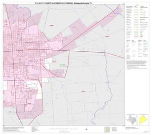 Primary view of object titled 'P.L. 94-171 County Block Map (2010 Census): Matagorda County, Inset B02'.