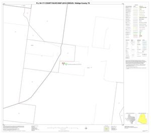 Primary view of object titled 'P.L. 94-171 County Block Map (2010 Census): Hidalgo County, Block 16'.