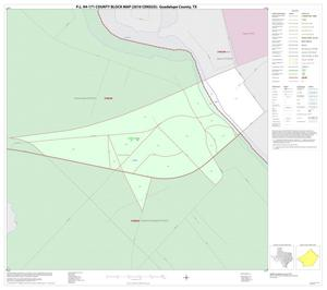 Primary view of object titled 'P.L. 94-171 County Block Map (2010 Census): Guadalupe County, Inset E01'.