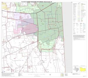 Primary view of object titled 'P.L. 94-171 County Block Map (2010 Census): Bowie County, Block 13'.