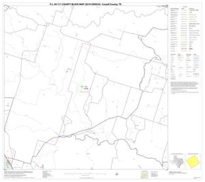 Primary view of object titled 'P.L. 94-171 County Block Map (2010 Census): Coryell County, Block 15'.