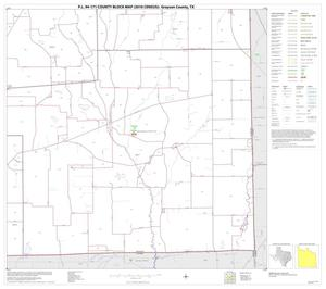 Primary view of object titled 'P.L. 94-171 County Block Map (2010 Census): Grayson County, Block 26'.