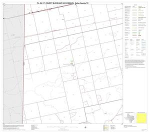 Primary view of object titled 'P.L. 94-171 County Block Map (2010 Census): Nolan County, Block 5'.