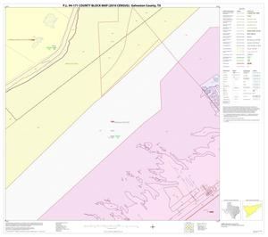 Primary view of object titled 'P.L. 94-171 County Block Map (2010 Census): Galveston County, Block 51'.
