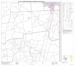 Primary view of object titled 'P.L. 94-171 County Block Map (2010 Census): Jasper County, Block 13'.