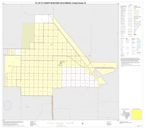 Primary view of object titled 'P.L. 94-171 County Block Map (2010 Census): Crosby County, Inset C01'.