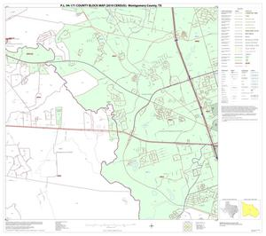 Primary view of object titled 'P.L. 94-171 County Block Map (2010 Census): Montgomery County, Block 21'.