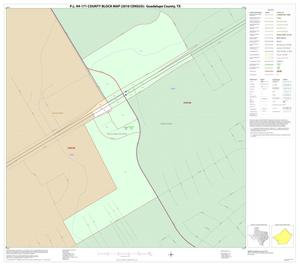 Primary view of object titled 'P.L. 94-171 County Block Map (2010 Census): Guadalupe County, Inset A01'.