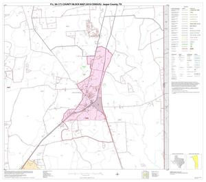 Primary view of object titled 'P.L. 94-171 County Block Map (2010 Census): Jasper County, Block 15'.