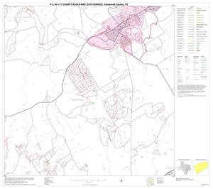 Primary view of object titled 'P.L. 94-171 County Block Map (2010 Census): Somervell County, Block 6'.
