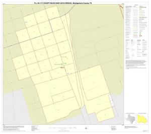 Primary view of object titled 'P.L. 94-171 County Block Map (2010 Census): Montgomery County, Inset B01'.