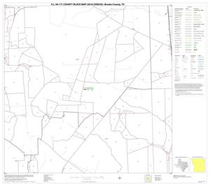 Primary view of object titled 'P.L. 94-171 County Block Map (2010 Census): Brooks County, Block 6'.