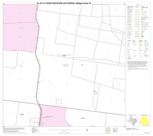 Primary view of object titled 'P.L. 94-171 County Block Map (2010 Census): Hidalgo County, Block 43'.