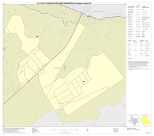 Primary view of object titled 'P.L. 94-171 County Block Map (2010 Census): Bosque County, Inset H01'.