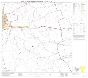 Primary view of object titled 'P.L. 94-171 County Block Map (2010 Census): Burnet County, Block 13'.