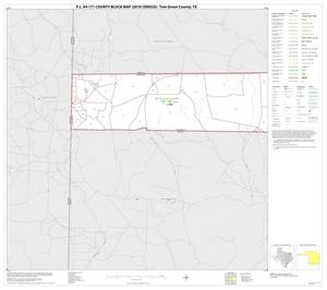 Primary view of object titled 'P.L. 94-171 County Block Map (2010 Census): Tom Green County, Block 6'.