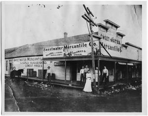 Primary view of object titled '[Sweetwater Mercantile Co., 1900]'.