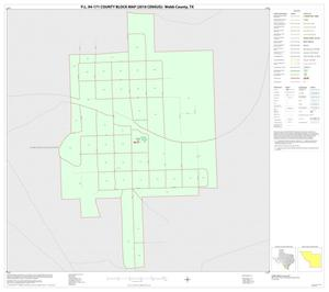 Primary view of object titled 'P.L. 94-171 County Block Map (2010 Census): Webb County, Inset G01'.