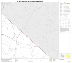 Primary view of object titled 'P.L. 94-171 County Block Map (2010 Census): Caldwell County, Block 12'.