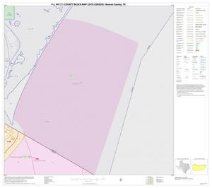 Primary view of object titled 'P.L. 94-171 County Block Map (2010 Census): Nueces County, Block 12'.