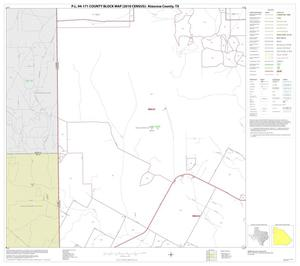 Primary view of object titled 'P.L. 94-171 County Block Map (2010 Census): Atascosa County, Block 4'.