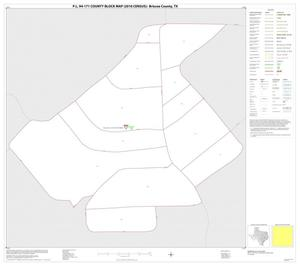Primary view of object titled 'P.L. 94-171 County Block Map (2010 Census): Briscoe County, Inset A01'.