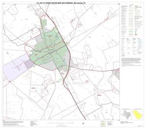 Primary view of object titled 'P.L. 94-171 County Block Map (2010 Census): Bee County, Block 10'.