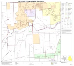 Primary view of object titled 'P.L. 94-171 County Block Map (2010 Census): Hidalgo County, Block 109'.