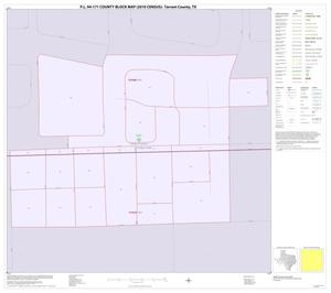 Primary view of object titled 'P.L. 94-171 County Block Map (2010 Census): Tarrant County, Inset Q01'.