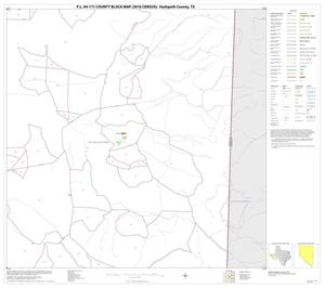 Primary view of object titled 'P.L. 94-171 County Block Map (2010 Census): Hudspeth County, Block 20'.