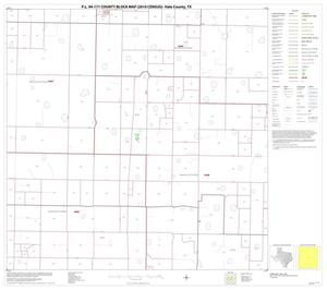 Primary view of object titled 'P.L. 94-171 County Block Map (2010 Census): Hale County, Block 11'.