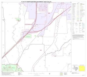 Primary view of object titled 'P.L. 94-171 County Block Map (2010 Census): Collin County, Block 34'.