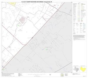 Primary view of object titled 'P.L. 94-171 County Block Map (2010 Census): Travis County, Block 48'.