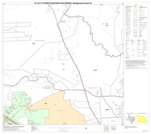 Primary view of object titled 'P.L. 94-171 County Block Map (2010 Census): Montgomery County, Block 27'.