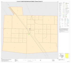 Primary view of object titled 'P.L. 94-171 County Block Map (2010 Census): Coleman County, Inset A01'.